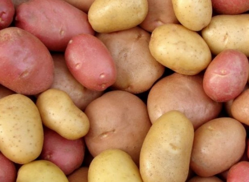 What A Potato Can Teach Us About Influencer Marketing